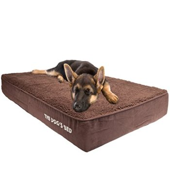 What's The Best Orthopedic Memory Foam Dog Bed? Our Complete Guide 6