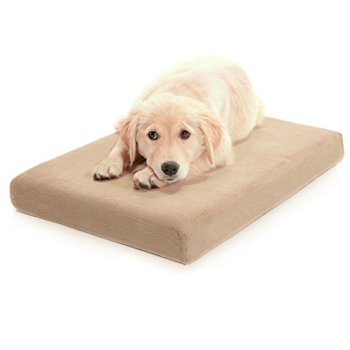 What's The Best Orthopedic Memory Foam Dog Bed? Our Complete Guide 19