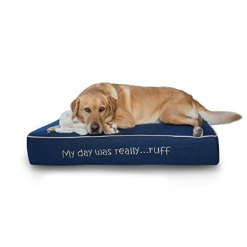 What's The Best Orthopedic Memory Foam Dog Bed? Our Complete Guide 16