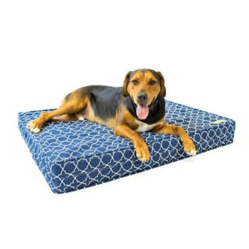What's The Best Orthopedic Memory Foam Dog Bed? Our Complete Guide 8