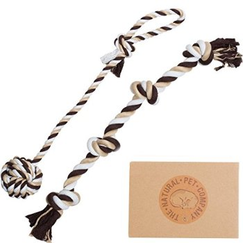 What Are The Best Dog Rope Toys? 10
