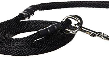 What Are The Best Leashes And Harnesses For Dogs That Pull? 10