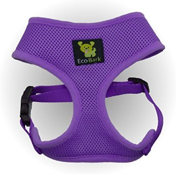 What Are The Best Leashes And Harnesses For Dogs That Pull? 13