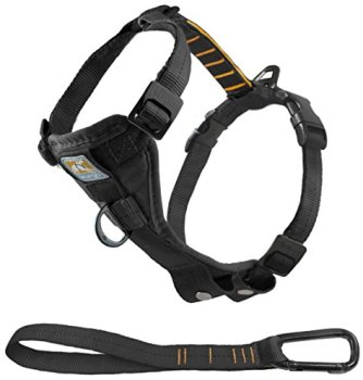 What Are The Best Leashes And Harnesses For Dogs That Pull? 2