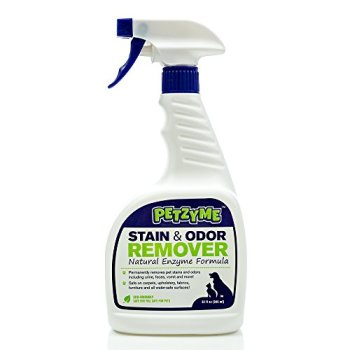 What's The Best Pet Odor Eliminator? Here's How To Remove Pet Odor From Your Home 7