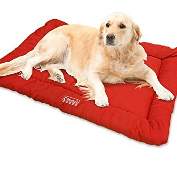 What's The Best Traveling Dog Bed? Our In-Depth Guide 7
