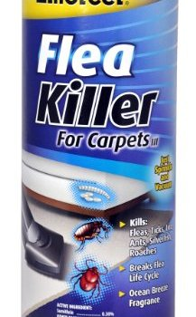 What's The Best Flea Powders For Carpets? Here's Our Top Picks 4