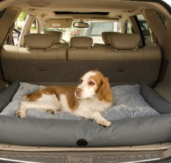 What's The Best Traveling Dog Bed? Our In-Depth Guide 18