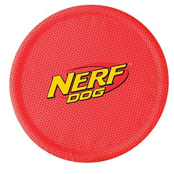 What Are The Best Dog Frisbees & Flying Discs? Our Top Choices 10