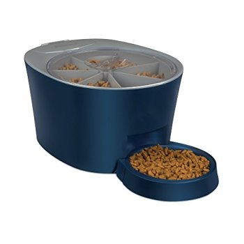 What's The Best Automatic Dog Feeder? Check Our Top Picks 11