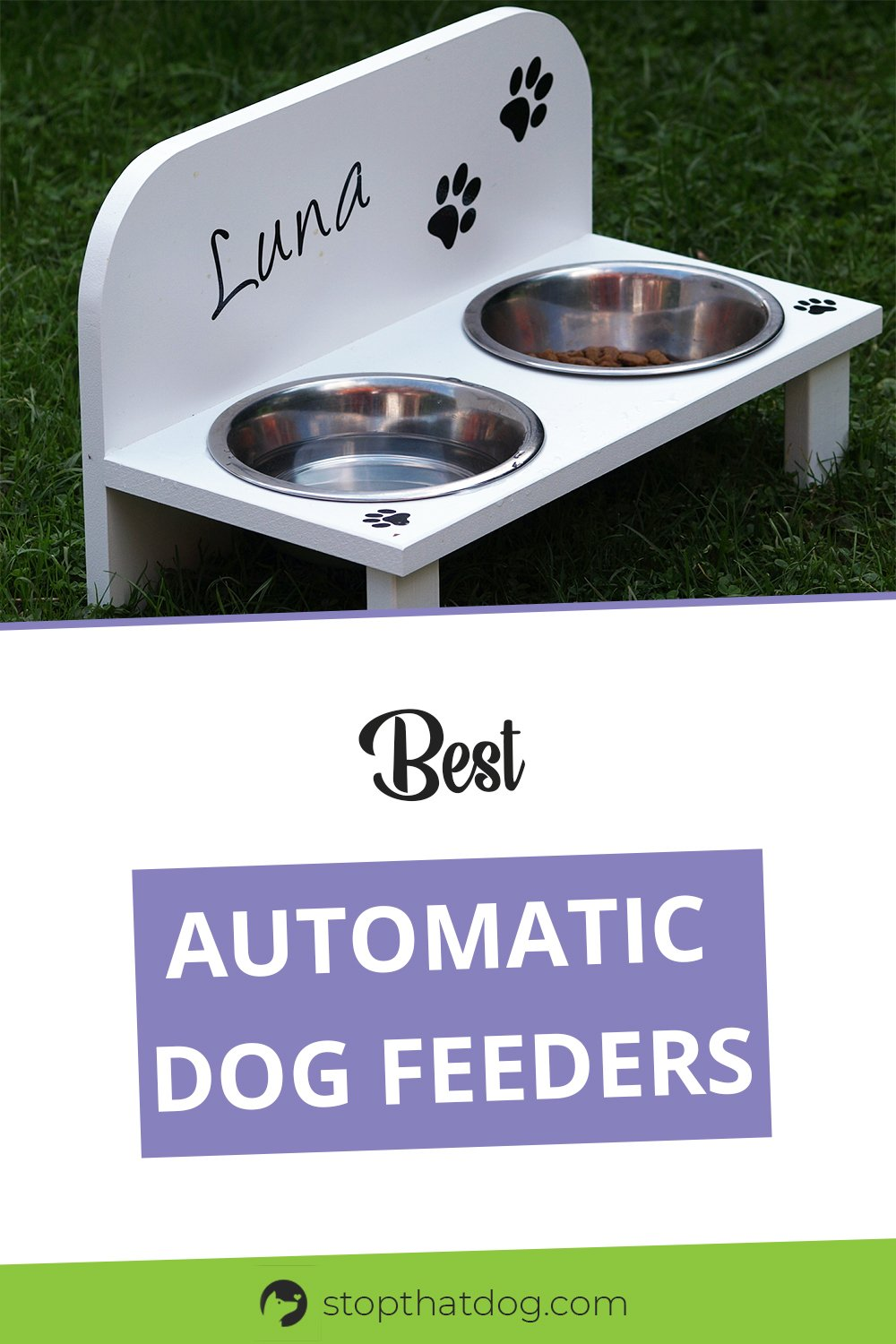 Thinking of buying an automatic dog feeder? If so, this guide reveals the top options on the market. Make sure you buy the right one for your dog.