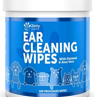 What's The Best Way To Clean My Dog's Ears? Your Detailed Guide 20