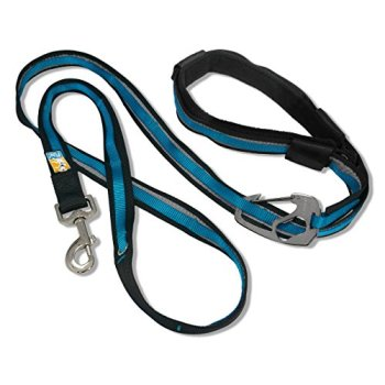 What's The Best Hands Free Dog Leash? Our Detailed Guide 4