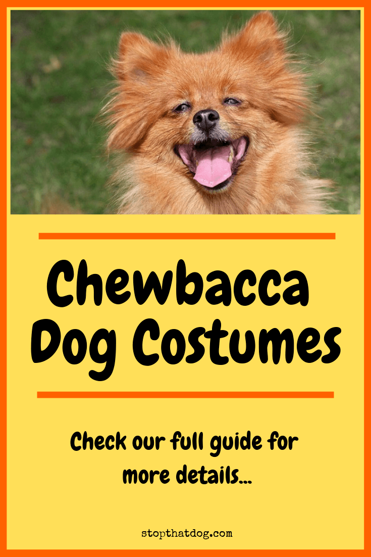 Looking for a fun chewbacca costume for your dog? If so, this guide reveals several of the top options currently on the market.