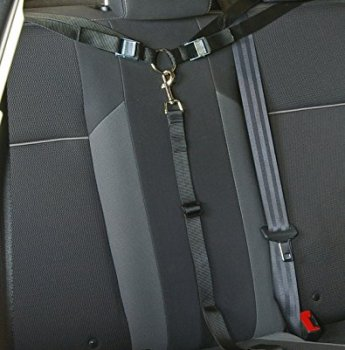 What Are The Best Dog Car Harnesses & Dog Seat Belts? Our Top Picks 10