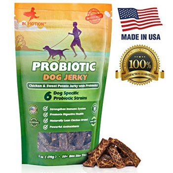 What Are The Best Probiotics For Dogs? Your Essential Guide 28