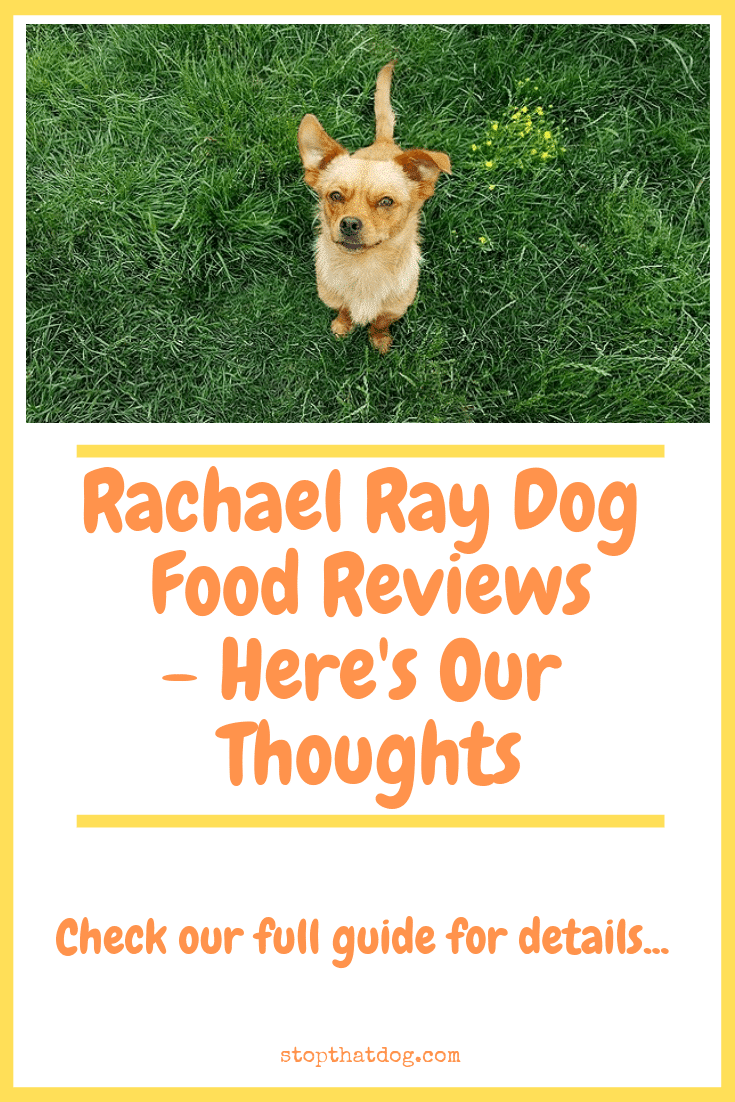 Curious to learn more about Rachael Ray dog food? If so, our review highlights the key facts, reveals feedback from genuine buyers and more.