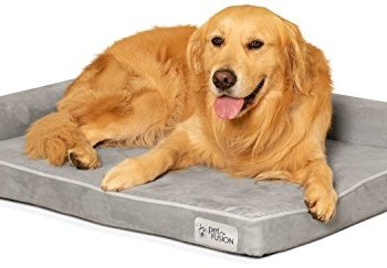 What Are The Best Indestructible, Tough & Chew Resistant Dog Beds? Your Ultimate Guide 7