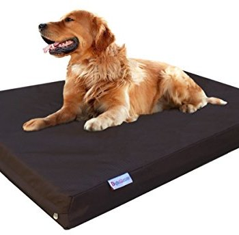 What Are The Best Indestructible, Tough & Chew Resistant Dog Beds? Your Ultimate Guide 28