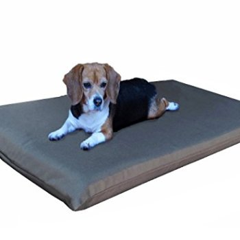 What's The Best Cooling Pad For My Dog? Here's Our Top Picks 3