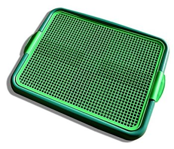 What's The Best Puppy Pee & Potty Training Pad? (+ Floor Trays & Holders!) 24