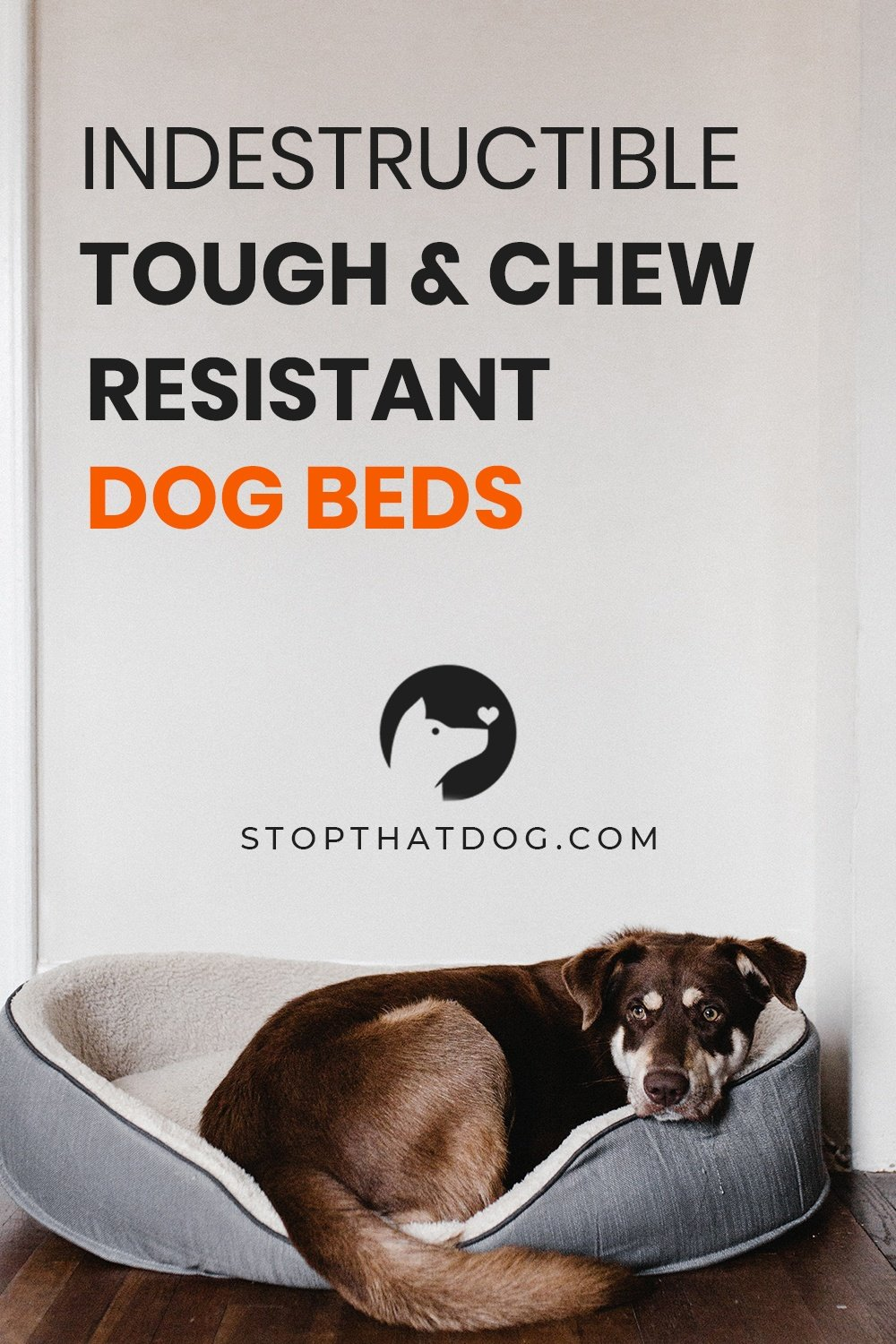 Looking for tough, chew-resistant, and indestructible dog beds? If so, this guide will show you the best options on the market.