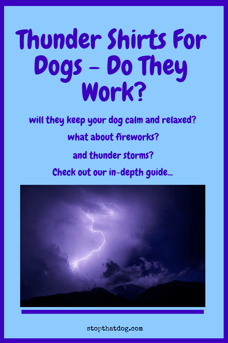 Curious to learn whether thundershirts really work for your dog? how about fireworks? and thunderstorms? This guide will answer all your questions and more.