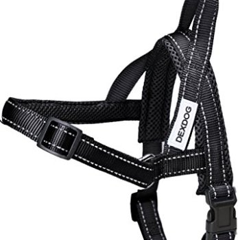 What's The Best Step-In Dog Harness? 1