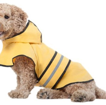 Waterproof Raincoats For Dogs - The Definitive Guide (2020) 7