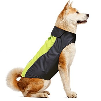 Waterproof Raincoats For Dogs - The Definitive Guide (2020) 9