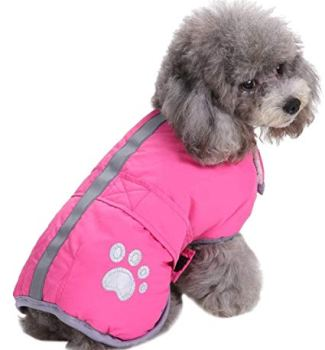 Waterproof Raincoats For Dogs - The Definitive Guide (2020) 23