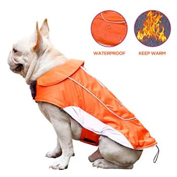 Waterproof Raincoats For Dogs - The Definitive Guide (2020) 17