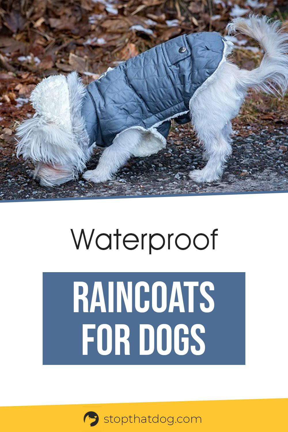 Need a waterproof raincoat for your dog? If so, this guide reveals the best options on the market. These ones won\'t let you down. Come take a look.