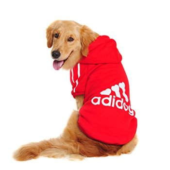 The Best Dog Sweaters For 2020 (Over 70+ Options To Choose From!) 32