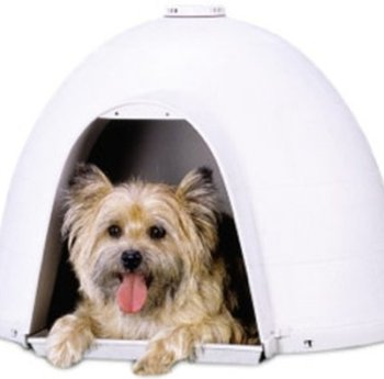 The Best Dog Igloo Houses Reviewed (2020) 8