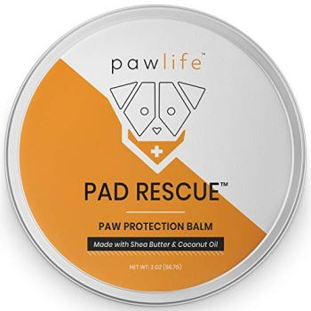 What's The Best Dog Paw Balm? Our Detailed Review (2020) 1