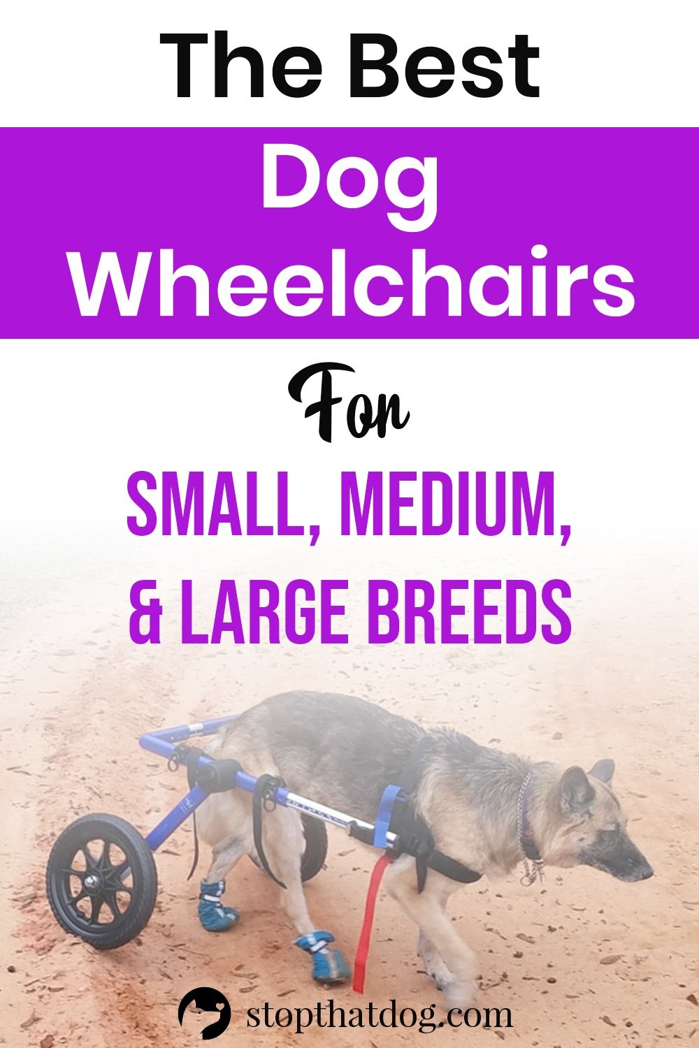 If your dog has a mobility issue or disability, a wheelchair may improve their quality of life. This guide reveals the best dog wheelchairs for small, medium, and large breeds.