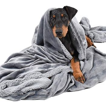 What Are The Best Dog Bed Blankets On The Market? Your Ultimate Guide 4
