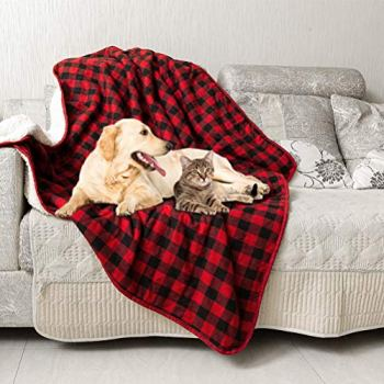 What Are The Best Dog Bed Blankets On The Market? Your Ultimate Guide 23