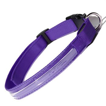 The Best LED Dog Collars - Our In-Depth Guide (2020) 11