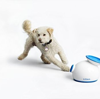 Dog Automatic Ball Launchers - A Fun Way To Keep Your Dog Active 1