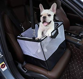 Dog Booster Car Seats - An In-Depth Guide (2020) 19