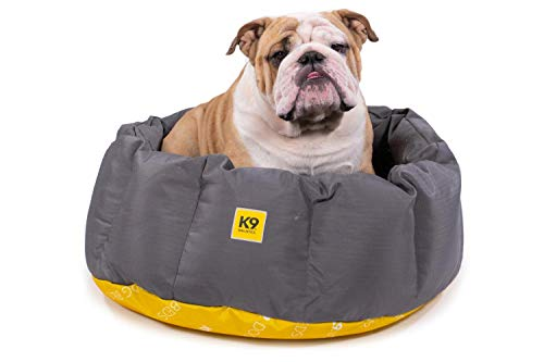 What Are The Best Elevated Dog Beds? (2020) 23