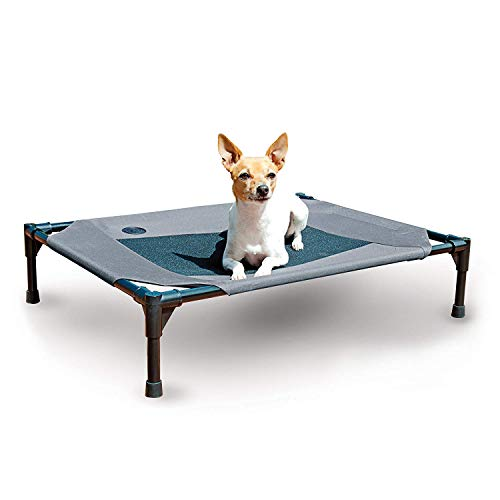What Are The Best Elevated Dog Beds? (2020) 2