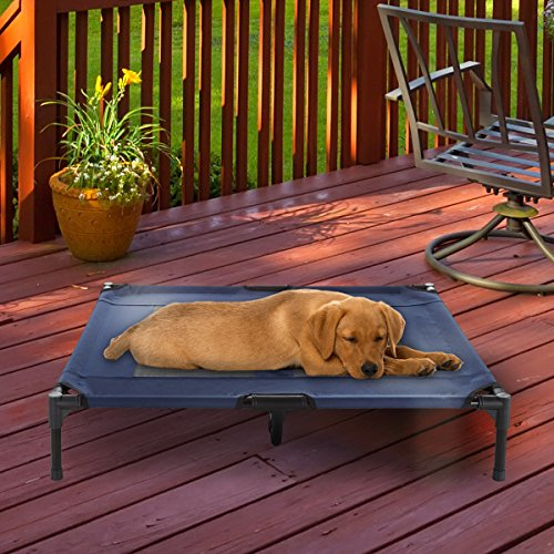 What Are The Best Elevated Dog Beds? (2020) 10
