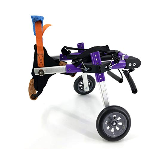 The Best Dog Wheelchairs For Small, Medium, & Large Breeds Reviewed (2020) 13