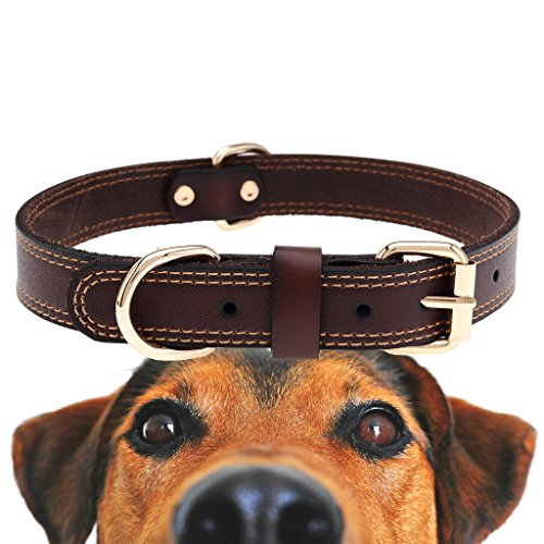 What's The Best Leather Dog Collar On The Market? (2020) 17