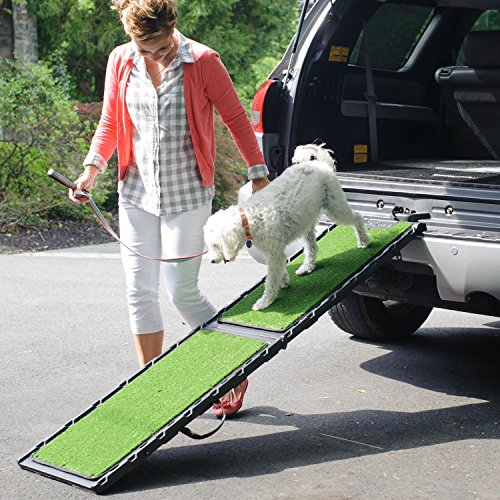 What Are The Best Dog Ramps In 2020? 7