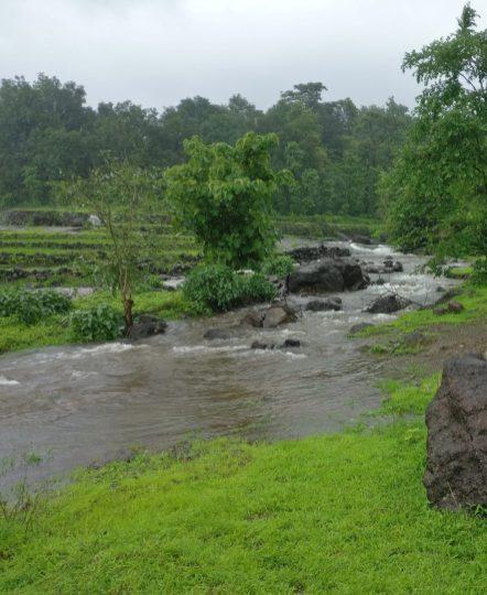Malshej Ghat - Waterflow