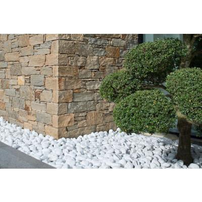 sol pierre decoration jardin capri